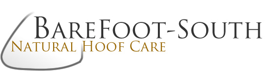 Barefoot Hoof Trimming and Care in the South East